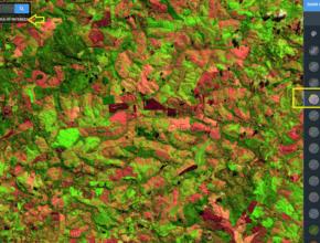 Você precisa conhecer o portal Land Viewer da EOS