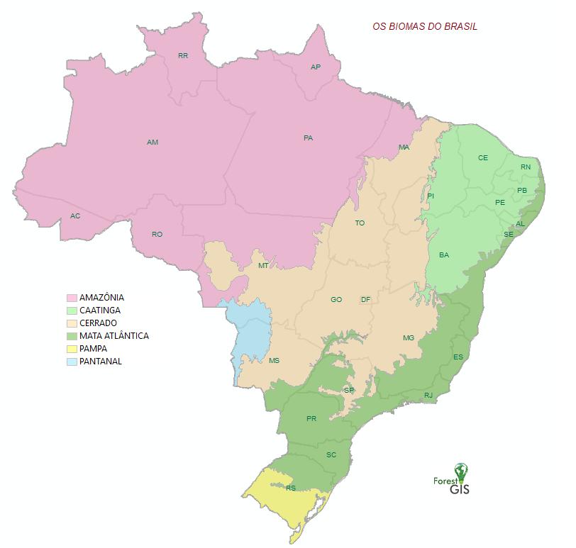 Mapa Biomas do Brasil (IBGE 2019)
