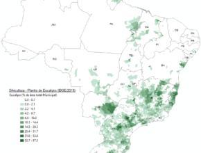 Área plantada com Eucalyptus no Brasil em 2019, Porcentagem da área municipal.