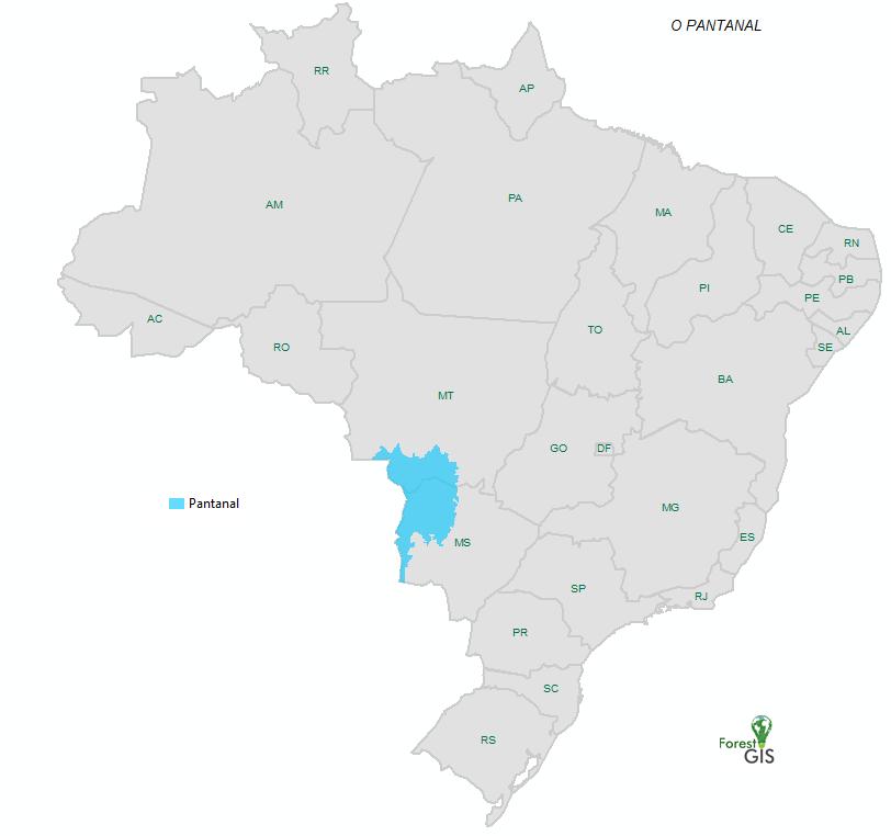 Localização do Pantanal (IBGE 2019)