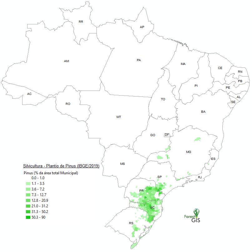 Área plantada com Pinus no Brasil em 2019, Porcentagem da área municipal.